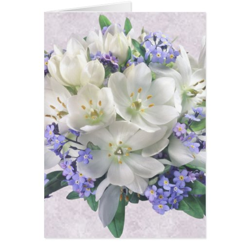Spring flowers. Crocuses and Forget-me-not Card