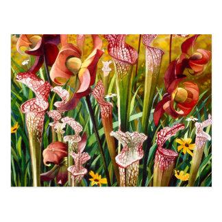 """Spring Flowers"" Floral Watercolor Art Post Card"