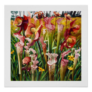 """Spring Flowers"" Floral Watercolor Art Poster"