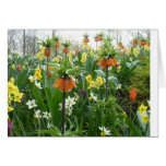 Spring flowers fun - yellow and orange card