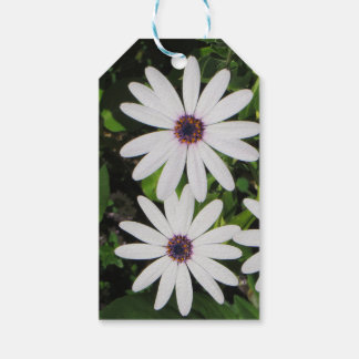 Spring Flowers Gift Tags