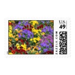 Spring Flowers in yellow and Purple postage Stamp