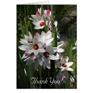 Spring Flowers Notelet Card