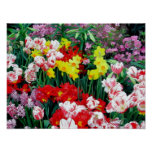 """""""Spring Flowers"""" Poster"""