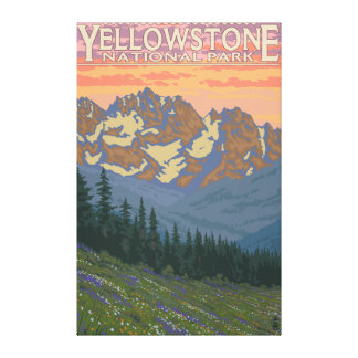 Spring Flowers - Yellowstone National Park Canvas Print
