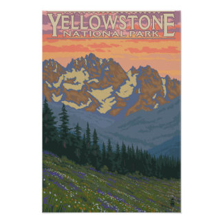 Spring Flowers - Yellowstone National Park Poster
