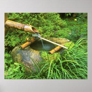 Spring for Tea Ceremony, Sanzen-in Temple, Poster