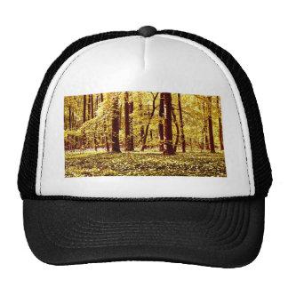 Spring forest golden edition trucker hat