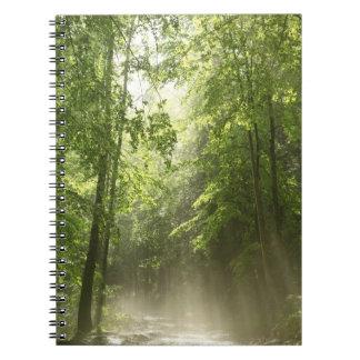 Spring Forest Mist Notebook