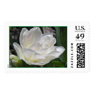Spring Fower Stamps