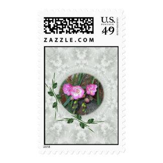Spring Freesia Circle Stamps