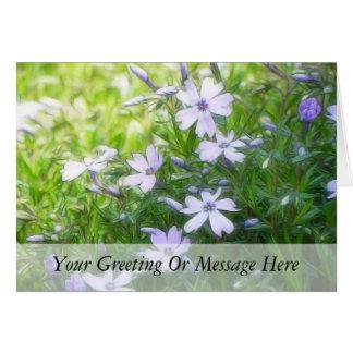 Spring Garden Blues - Creeping Phlox Cards