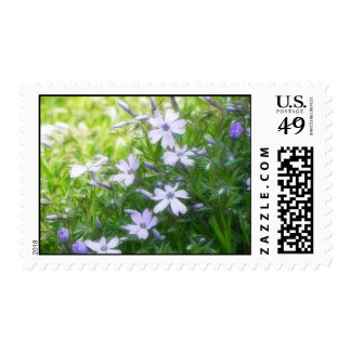 Spring Garden Blues - Creeping Phlox Postage