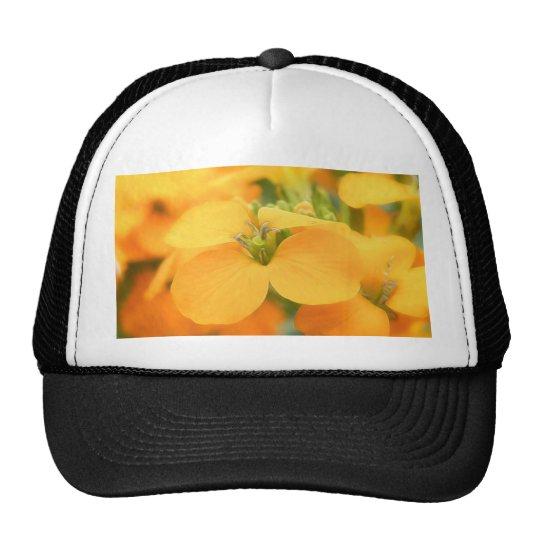 Spring Garden - Cheiranthus allionii Trucker Hat