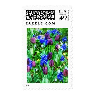 Spring Garden in Shades of Purple Postage