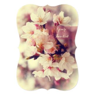 Spring Garden Party White Cherry Blossoms Sakura Card