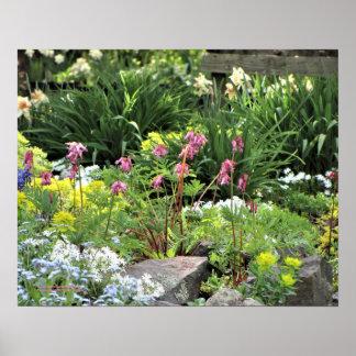 Spring Garden Perennials Poster