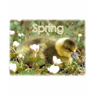 Spring Gosling shirt