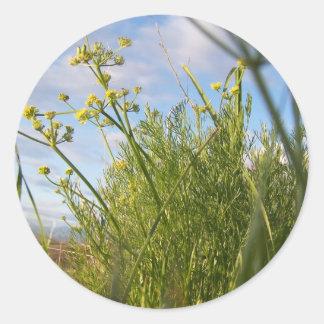 Spring Grass Classic Round Sticker