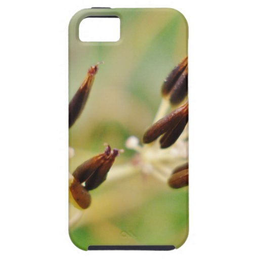 Spring Grass iPhone 5 Covers