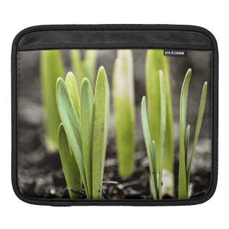 Spring green shoots iPad sleeve