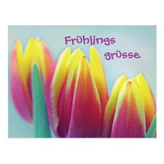 Spring greetings postcard