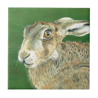 Spring Hare Ceramic Tile