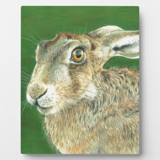 Spring Hare Plaque