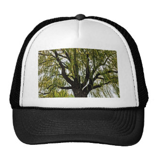spring hopes muted trucker hat