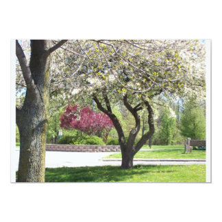 Spring in Bloom  Invitation