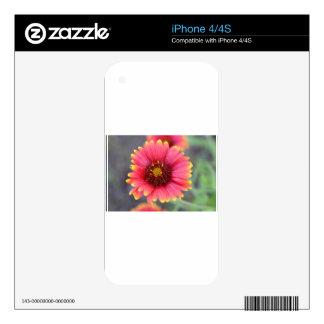 Spring in Bloom iPhone 4S Skins
