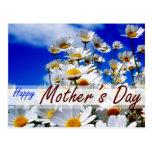 Spring IN blue sky for MOM Postcards