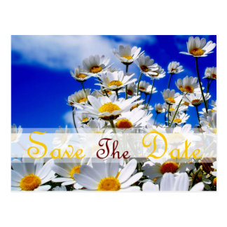 Spring IN blue sky for Save the Date Postcard