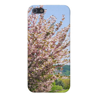 Spring in Bonn Cover For iPhone 5