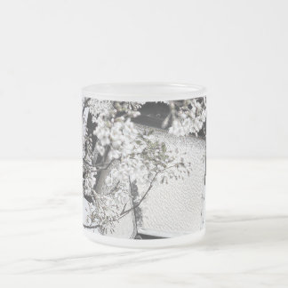 Spring in Brussels Frosted Glass Coffee Mug