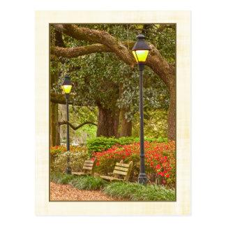 Spring in Forsyth Park - Savannah, GA Postcard