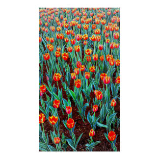 Spring In Holland Poster