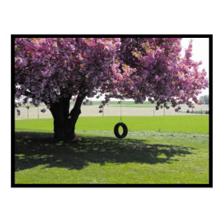 ~ Spring in Lancaster County ~ 131 Postcard