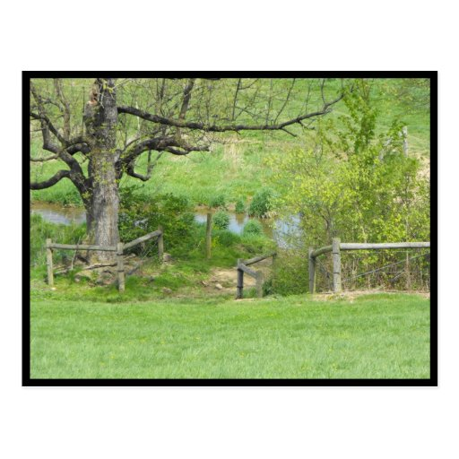 ~ Spring in Lancaster County ~ 78 Postcard
