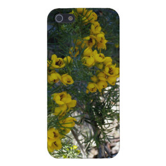 Spring in Las Vegas - Yellow Flowers - Cases For iPhone 5