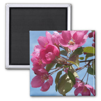 Spring In Maine 2 Inch Square Magnet