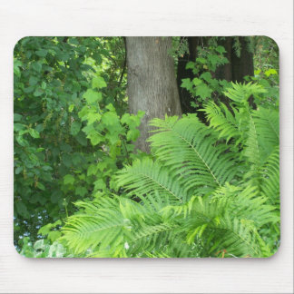 Spring In Maine Mouse Mat