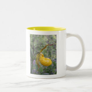 Spring In Maine Two-Tone Coffee Mug