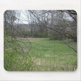 Spring in Minnesota #6 Mouse Pad