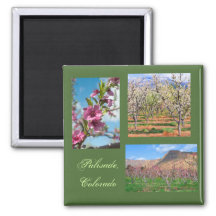 Spring in Palisade Gallery Template Magnet 2 Inch Square Magnet