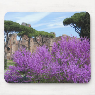 Spring in Rome Mouse Pad