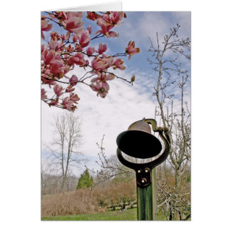 Spring in the Country Note Greeting Card