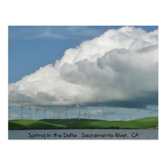 Spring in the Delta Postcard
