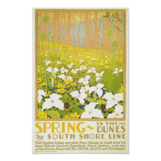 Spring- In The Dunes Poster