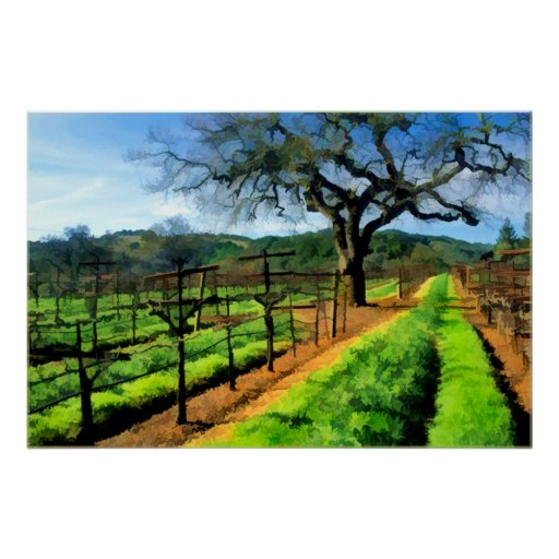 Spring in the Vineyard Posters